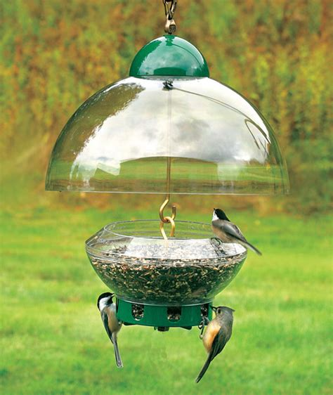 duncraft com droll yankees big top squirrel proof feeder