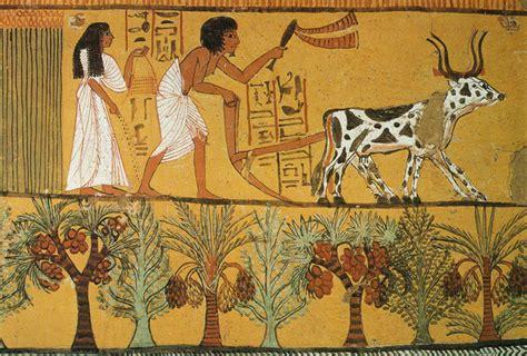 alimentazione degli egizi nel mesolitico si sfruttavano specie quali l orzo