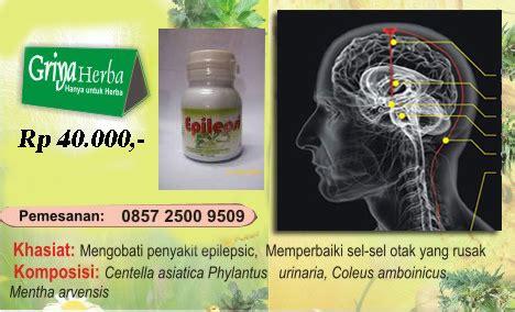 Obat Herbal Epilepsi obat herbal epilepsi quot ayan quot sehatherba