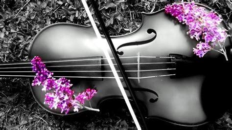 colorful violin wallpaper violin 1080p wallpaper high definition high quality