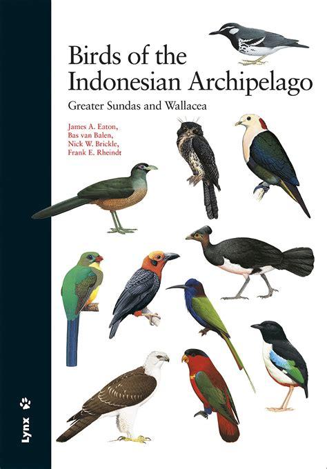birds of the indonesian archipelago lynx edicions