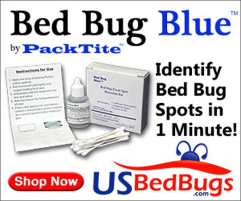does bleach kill bed bugs baby powder and bed bugs baby powder and bed bugs will