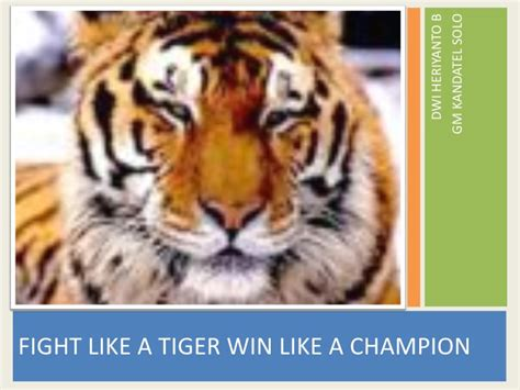 fight like a tigers win like a chion