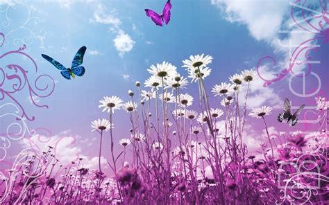 imagenes de rosas y mariposas bellas bellas mariposa y flores normiuxis mi web