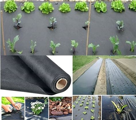 Commercial Landscape Fabric Commercial Grade Weed Control Best Landscape Fabric