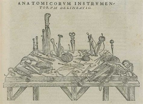 Small High Chair Andreas Vesalius And De Fabrica Circulating Now From Nlm