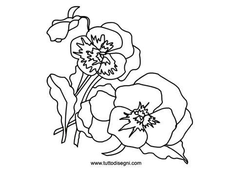 viola fiore disegno violette fiori da colorare tuttodisegni