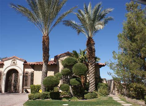 las vegas landscaping portfolios desert springs