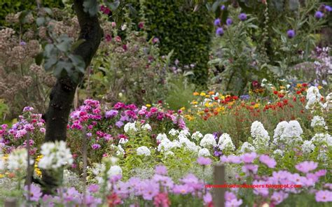 Flower Garden Images Free Beautiful Collection Of Home Garden Wallpapers Free For Android Top Level Beautiful