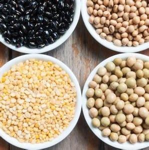 alimenti ricche di fibre alimenti ricchi di fibre quali sono superpalestra