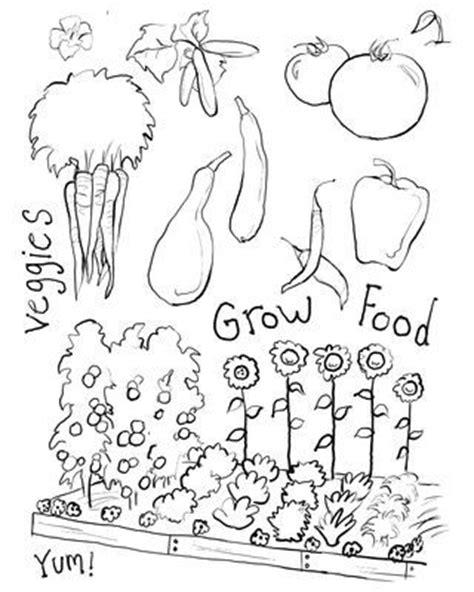 coloring pages vegetable garden 17 best images about coloring pages on gardens