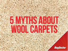 Wool Carpet Cleaner 5 Myths About Cleaning Wool Carpets
