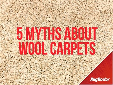 how do you clean a wool rug 5 myths about cleaning wool carpets