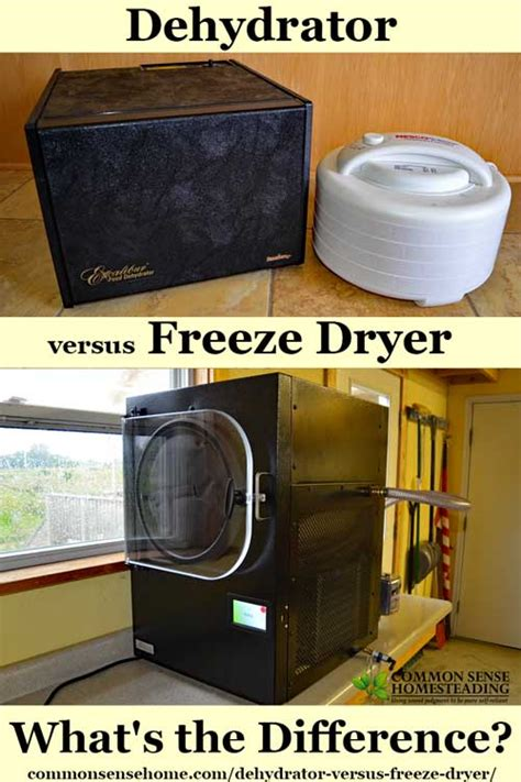 The Difference Between Hair Dryer And Dryer dehydrator versus freeze dryer what s the difference