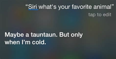 siri what is your favorite color questions to ask siri with that are hilarious and