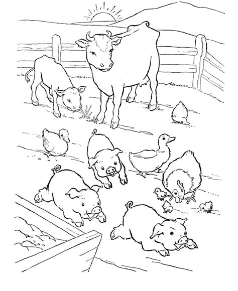 barn coloring pages with animals barn yard pigs coloring pages printable farm animal