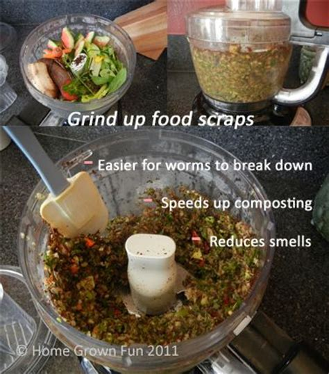best compost worms 25 best ideas about worm composting on worm