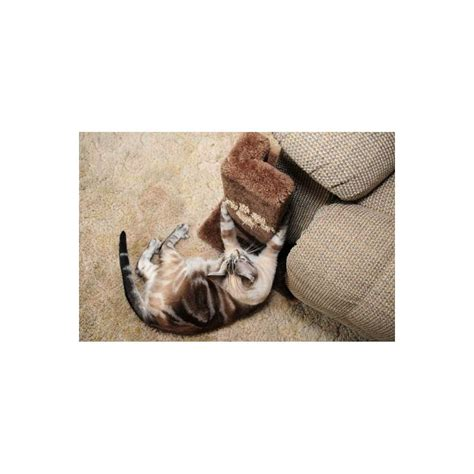 sofa protect cat scratcher sofa protect cat scratcher energywarden