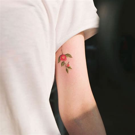 camellia flower tattoo best 20 camellia flower photos ideas on