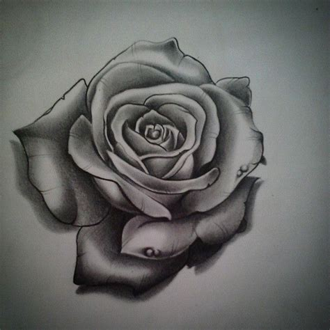 open rose tattoo 25 best roze tatoeages images on drawings