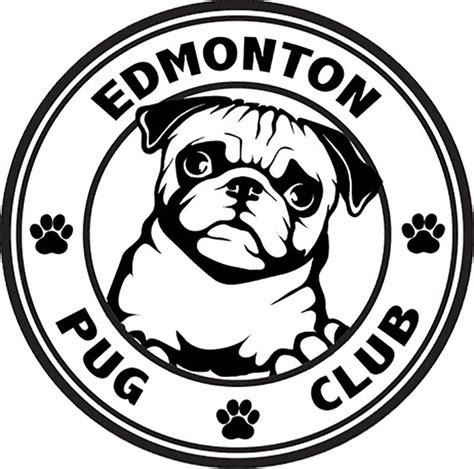 pug breeders edmonton edmonton pug club