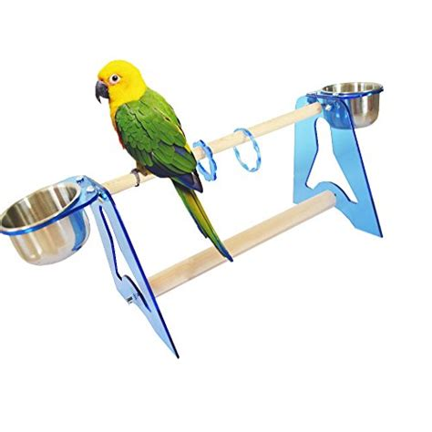 parrot stands acrylic bird cage table stands training