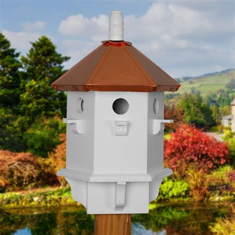 finches house pin finch bird house plans on pinterest