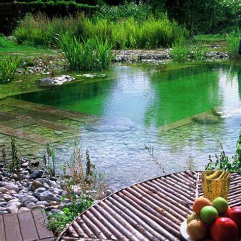 Backyard Nature by 24 Backyard Pools You Want To Them