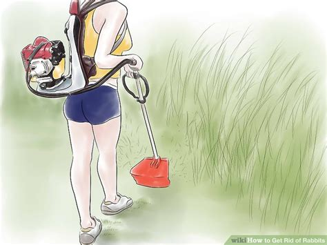 getting rid of rabbits in backyard how do i get rid of rabbits in my backyard 3 ways to get rid of rabbits wikihow