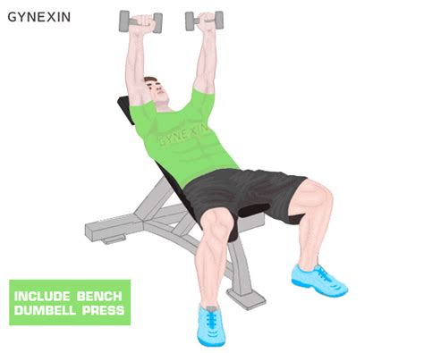 bench chest exercises top 10 chest workouts for all