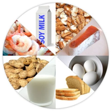 common food allergies 8 common allergens related keywords 8 common allergens keywords keywordsking