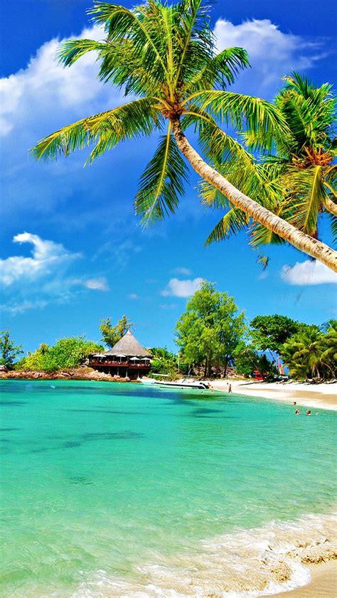tropical palm beach iphone wallpaper beach paradise