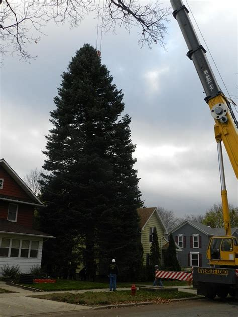 michigan s christmas tree comes down in jackson photos