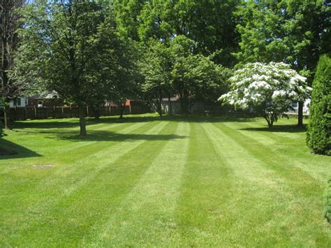 lehigh valley landscapers designs lawns