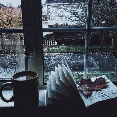 rain aesthetic tumblr