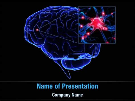 Brain Powerpoint Templates Brain Powerpoint Backgrounds Templates For Powerpoint Brain Ppt Template