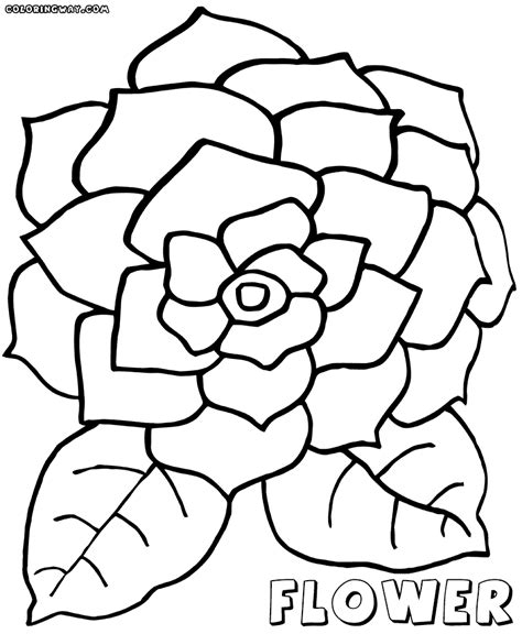 coloring pages large flowers big flower coloring pages coloring pages to and