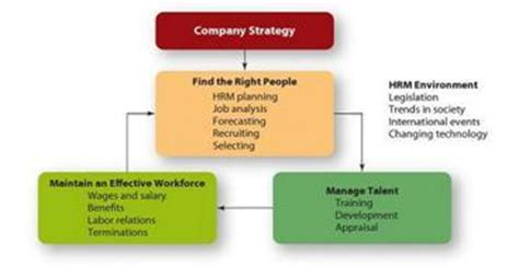 Job Resume Definition by Key Features Of Strategic Human Resource Management Human Resource Management