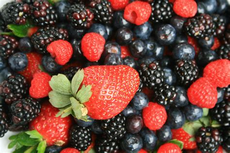 And Berries strawberry and other berries free stock photo