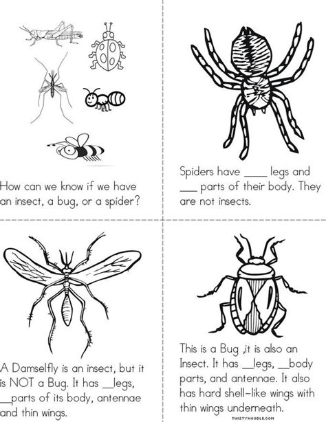 coloring pages insects and spiders insects bugs and spiders book twisty noodle