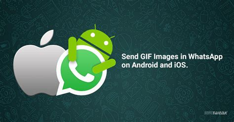 whatsapp on android how to send gif images in whatsapp on android and ios