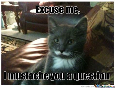 Mustache Cat Meme - mustache cat by spectre5095 meme center