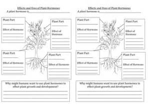 plant hormones worksheet effects and uses of plant hormones by lu teaching