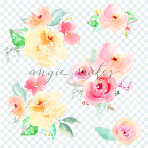 flower no background watercolor flower bouquets on transparent background with