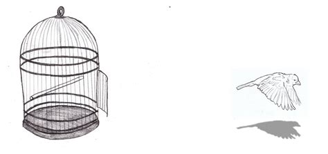 coloring pages of bird cages coloring pages of bird cages coloring pages for free
