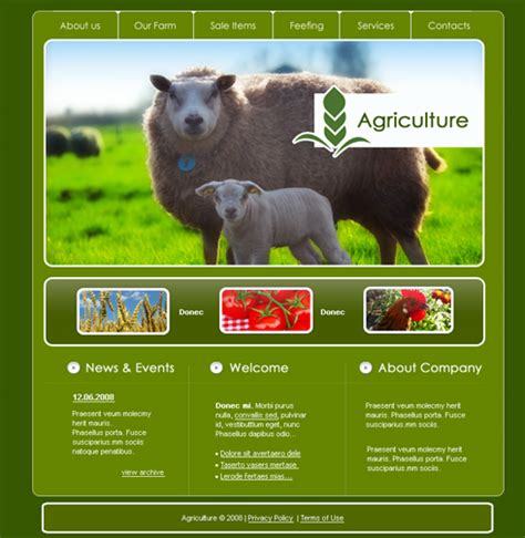 Sheep Webpage Template 3522 Animals Pets Website Templates Dreamtemplate Animal Website Templates