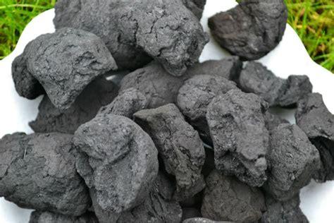 Dari Batu Menjadi Bara serba serbi tentang batu bara