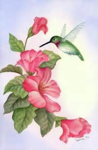top 25 best hummingbird art ideas on pinterest paint