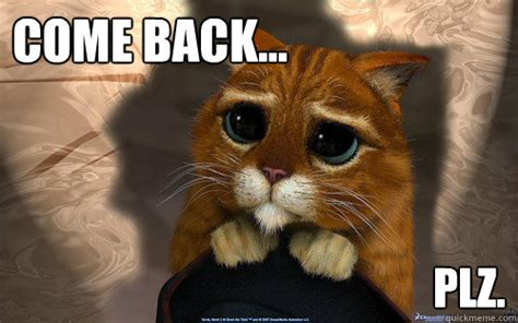 Come Back To Me Meme - come back plz sad cat quickmeme
