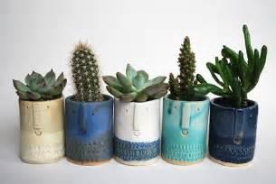 Cute Pots For Plants by Cactus Pot Plants